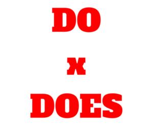 Do e Does: O uso correto nas Frases em Inglês? Qual a Diferença