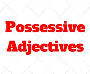 Quando e Como usar os Possessive Adjectives no Ingles: Exercícios